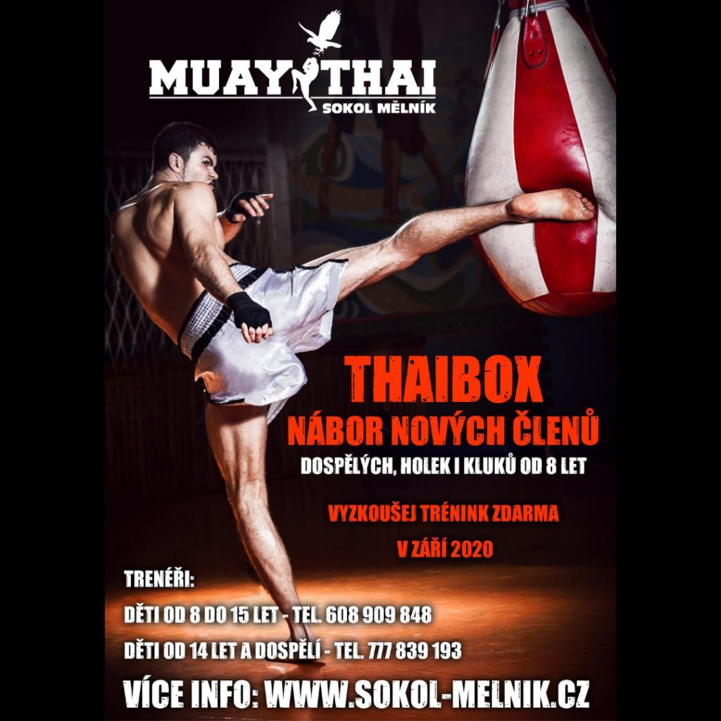 IG_Muay_thai_Sokol_Melnik_2_ctverec